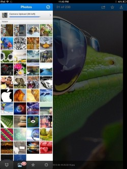 dropbox pictures view